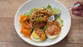 伊斯兰教的沙拉冠上酥脆油煎的芋头选矿甜炸酱希拉勒食物的菜和熟蛋刺中由在板材的叉子 影视素材