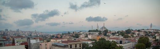 伊斯坦布尔和Rustem巴夏清真寺,伊斯坦布尔,土耳其全景  库存图片