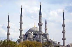 伊斯坦布尔大清真寺 库存图片