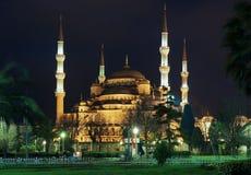 伊斯坦布尔清真寺晚上sultanahmet视图 免版税图库摄影