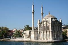 伊斯坦布尔清真寺火鸡 库存图片