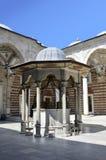 伊斯坦布尔清真寺火鸡 库存照片