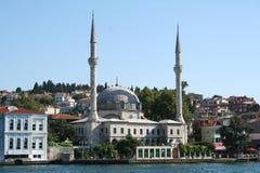伊斯坦布尔清真寺火鸡 免版税库存照片