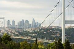 伊斯坦布尔火鸡 库存照片