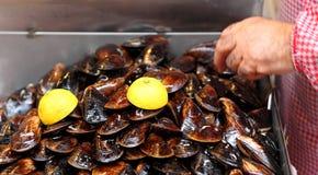 伊斯坦布尔街食物:未加工的Mussles 免版税库存照片