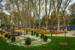 伊斯坦布尔,土耳其- 6 22 2018年:在名为` Gulhane公园`的Topkapi宫殿旁边的五颜六色的公园 免版税库存图片