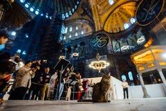伊斯坦布尔,土耳其- 2015年10月11日:在游人的背景的猫在圣索非亚大教堂博物馆里面的 免版税库存图片