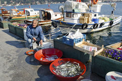 伊斯坦布尔bosphorus,有鱼狩猎的钓鱼竿 免版税图库摄影