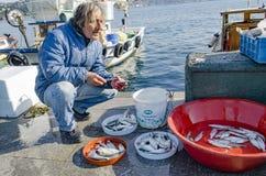 伊斯坦布尔bosphorus,有鱼狩猎的钓鱼竿 库存图片