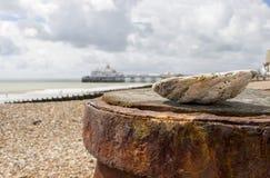 伊斯特本海滩码头看法在海壳的背景中在海滩的在夏天阳光下 免版税库存照片