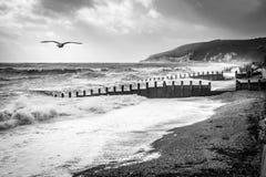 伊斯特本,东部SUSSEX/UK - 10月21日:风暴布里亚的尾声 图库摄影