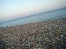伊斯特本Pebble海滩 库存图片