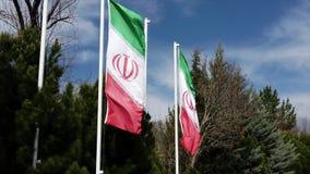 伊朗旗子在微风-在慢动作的垂直的旗子飞行 股票录像