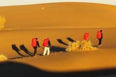 伊朗沙漠远足 库存图片