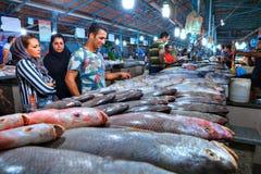 从伊朗的波斯家庭在市场上选择一条鱼 免版税库存照片