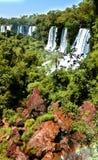 伊瓜苏瀑布在阿根廷和巴西,南美 图库摄影