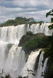 伊瓜苏瀑布在阿根廷 免版税库存照片