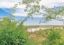 伊瓜苏瀑布鸟瞰图  图库摄影