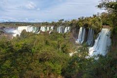 伊瓜苏瀑布(阿根廷) 库存照片