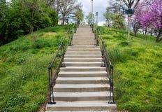 伊甸园公园步骤 库存照片