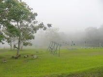 伊甸园自然 免版税库存图片