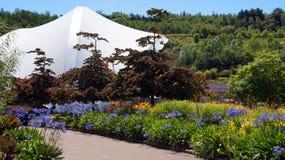 伊甸园项目庭院在圣奥斯特尔康沃尔郡 免版税库存照片