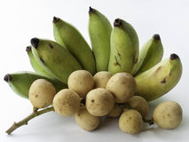 伍伦贡和香蕉 免版税库存图片