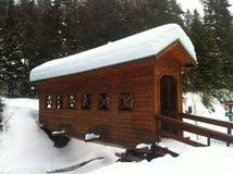 伍德布里奇在加拿大冬天 库存图片