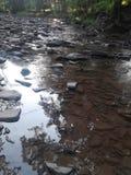 伍德斯托克供游泳的深水潭 免版税库存照片