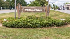伍德沃德梦想巡航路线, Ferndale, MI 免版税库存图片