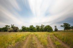 伏尔加格勒俄国干草原或大草原在与橡木、草和云彩的7月 免版税库存照片