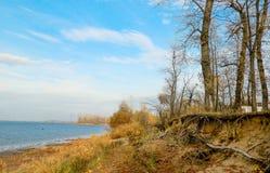 伏尔加河的岸 免版税库存照片