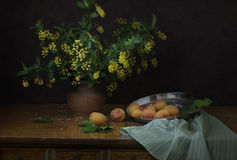 伏牛花在一个花瓶和杏子开花在黑暗的背景 免版税库存图片