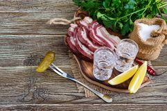 伏特加酒两个小玻璃与柠檬切片、酱瓜和黑麦面包的用在黑暗的背景的盐味的烟肉 库存照片