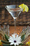 伏特加酒或杜松子酒与围拢它的花和淡紫色的马蒂尼鸡尾酒 库存照片