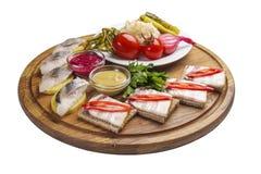 伏特加酒的被分类的快餐 萨洛用芥末和辣根 自创泡菜 鲱鱼用土豆 在土气 图库摄影