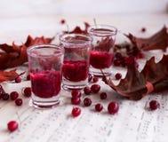 伏特加酒蔓越桔,伏特加酒鸡尾酒用在aut的蔓越桔 库存图片