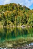 巴伐利亚的农村风景在德国 免版税图库摄影