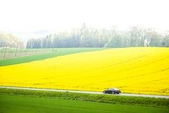 巴伐利亚的领域 库存照片