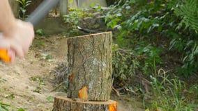 伐木工人与轴的剁木头 影视素材