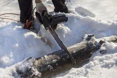 伐木工人切开一个树枝成片断在雪的一个森林里 锯的击倒的树到片断里 免版税库存图片