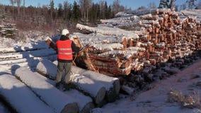 伐木工人固定绳索和呼叫请求工作者在堆附近注册冬天 股票视频