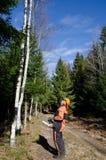 伐木工人注意 免版税库存照片