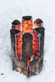 伐木工人的灯笼 免版税库存图片