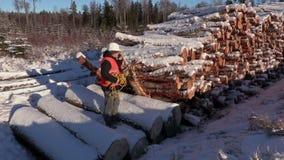 伐木工人谈话在巧妙的电话在堆附近注册冬天 影视素材