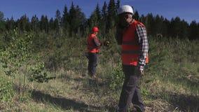 伐木工人谈话在智能手机在森林里 股票录像