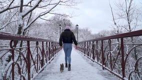 休息与小约克夏狗的妇女户外 跑在有所有者的皮带的Yorkie在冬天雪的桥梁 影视素材