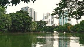休息和体育活动的城市公园在大都会的中心 在a的绿色植被包围的美丽的湖 股票录像