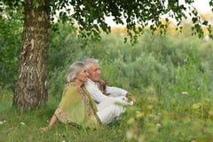 休息在公园的资深夫妇 免版税库存照片