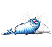 休息在午餐以后的蓝色猫 免版税库存图片